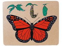 Monarch Butterfly Lifecycle Puzzle