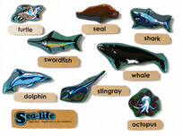Sealife English Magnetics
